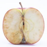 りんごの酸化